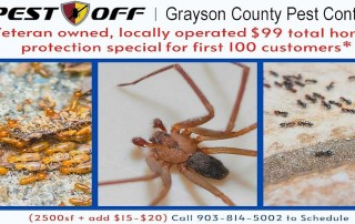 $99 Total Home Protection Pest Control Special
